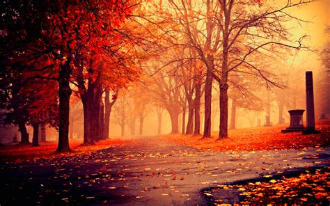 Fall Backgrounds Laptop by Autumn Wallpaper 183 Free Cool Hd Wallpapers For