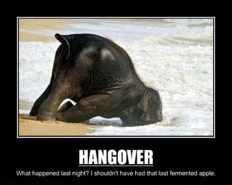 Funny Hangover Memes - 301 moved permanently