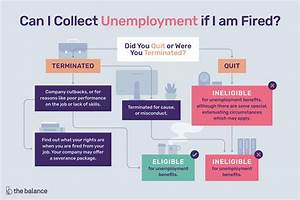Compensation Requirements In Cover Letter Can I Collect Unemployment If I 39 M Fired