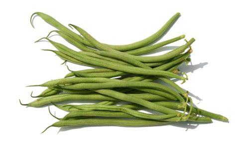 haricots verts cuisin駸 haricots verts à la lyonnaise la cuisine du jardin