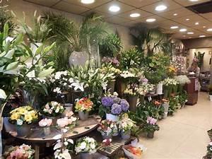 fleurs bordeaux cauderan With chambre bébé design avec fleuriste envoi de fleurs