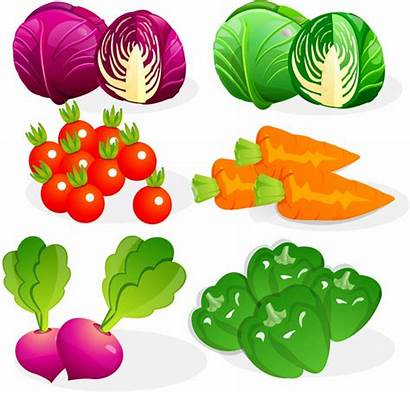 Vegetables Vector Graphics Vegetable Cdr Drawing Graphic