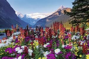 Puzzle En Ligne Adulte : montagnes fleuries 3000 teile ravensburger puzzle ~ Dailycaller-alerts.com Idées de Décoration