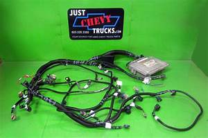Chevy Gmc 8 1 496 Complete Stand Alone Efi Engine Wire