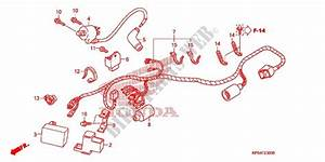 Wire Harness  Battery For Honda Crf 230 F 2005   Honda