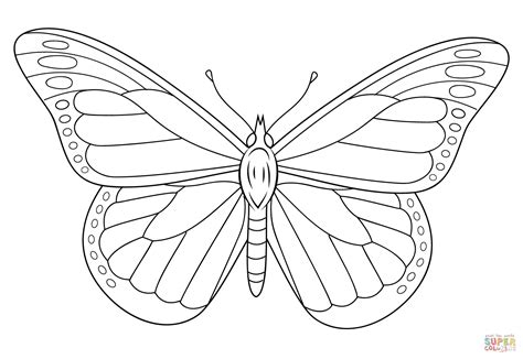 A very beautiful butterfly coloring page. Monarch butterfly coloring pages download and print for free