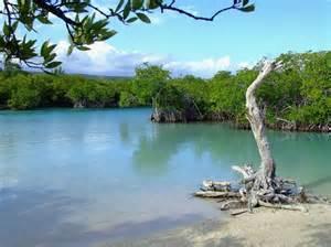 Gilligan's Island Puerto Rico