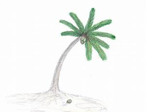 Drawing coconut tree in fast motion - YouTube