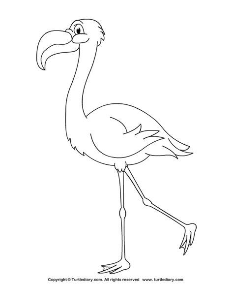 Flamingo Kleurplaat by Flamingo Coloring Sheet Turtle Diary