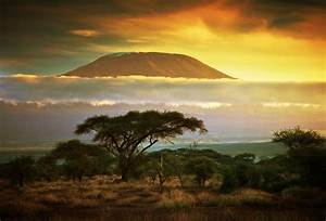Climb Kilimanjaro: Trek the Marangu Route in Tanzania