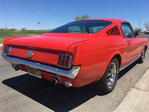 "1966 Mustang Fastback ""Hi Performance"" - Alpio's At Troon"