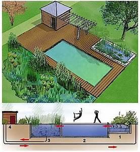 Construction Piscine Naturelle : piscine naturelle les diff rentes techniques de filtration d 39 eau dossier ~ Melissatoandfro.com Idées de Décoration