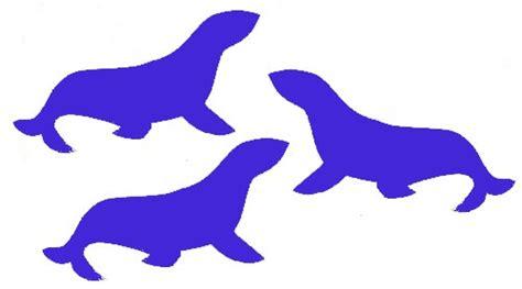 seal blue color seal blue color seal color pitbull www imgkid the image