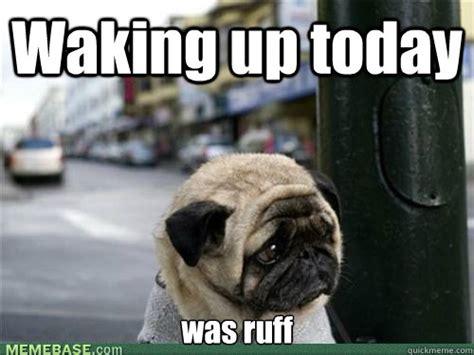 Sad Pug Meme Waking Up Today Was Ruff Sad Pug Is Sad Quickmeme