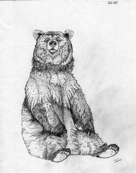 grizzly bear illustration - Google zoeken | tattoos | Pinterest | Bear illustration, Tattoo and