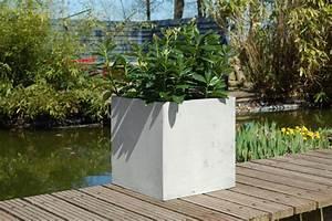 Günstig Garten Verschönern : pflanzenk bel aus beton die nicht nur deinen garten versch nern ~ Whattoseeinmadrid.com Haus und Dekorationen