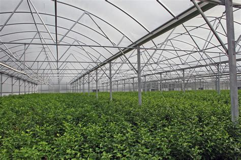grand trussed bow 171 imperial builders supply inc florida greenhouse construction supply