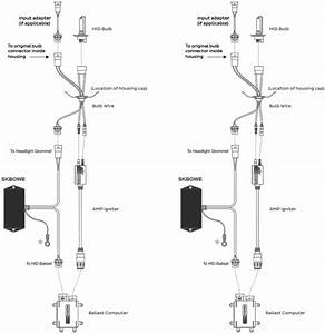 Bmw E46 Hid Wiring Diagram