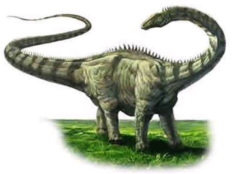Long Necked Dinosaurs Held Heads High