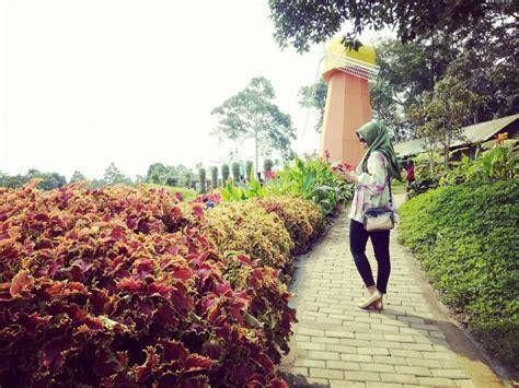 travelingyukcom kebun bunga  jawa tengah destinasi