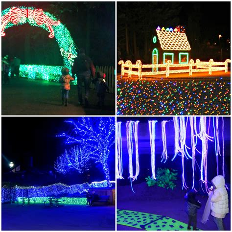 willamette valley zoolights adventure