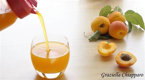 succo di frutta fatto in casa succo di frutta all albicocca fatto in casa ricetta