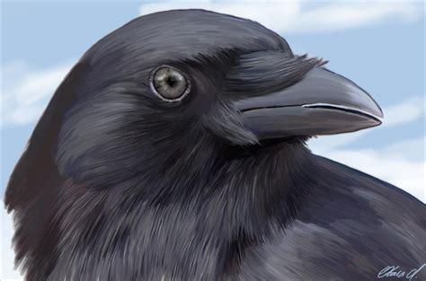 Friday Raven Blogging Hecatedemeter