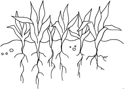 Pflanzen Mit Wurzeln Ausmalbild & Malvorlage (blumen