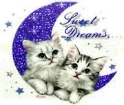 Glitter Cats :: Glitter Pictures. Glitter Graphics
