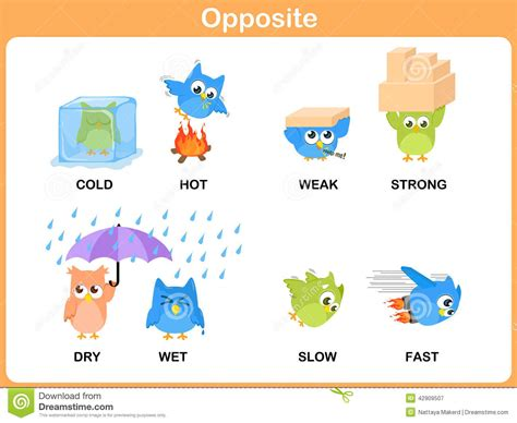 List Of Opposite Adjectives Opposites Words Vocabulary  Autos Post
