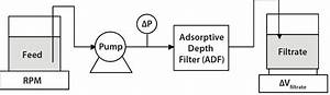 Using Adsorptive Depth Filtrationbioprocess International