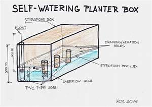 17 Best Images About Self Watering Planter On Pinterest