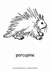 Colouring Porcupine Pages Coloring African Animals Animal Pdf Activity American Explore Getcoloringpages Village sketch template
