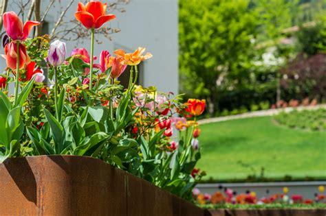 fioriere da terrazzo fioriere e vasi come organizzare le tue piante in