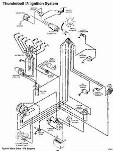 16  Mercruiser 260 Engine 1986 Wiring Diagram Engine