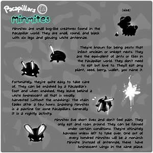 Pacapillars