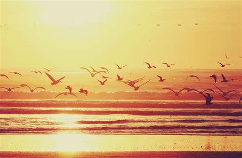 learn    summer blog