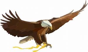 Pictures Of Cartoon Eagles - Cliparts.co