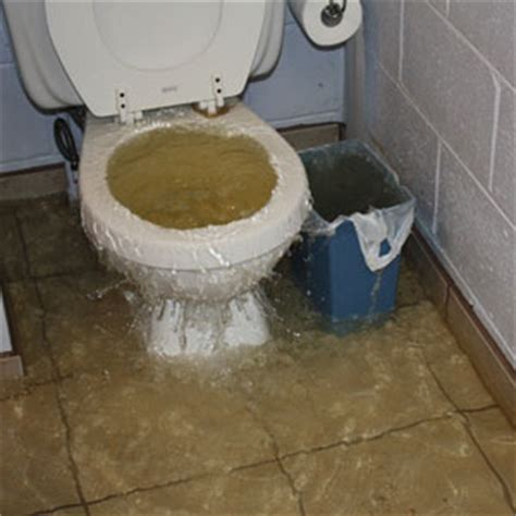 is your toilet overflowing black water damage