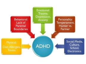 What Causes ADHD