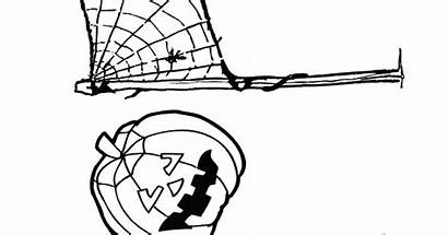 Spider Coloring Halloween Pages Web Printables