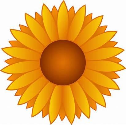 Clipart Sunflower Clip Clipartion