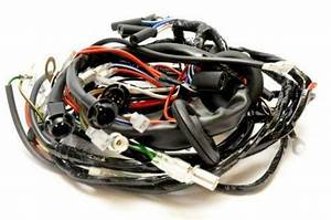 Triumph Wiring Harness  Motorcycle Parts