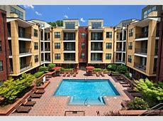 Cielo Apartments Rentals Charlotte, NC Apartmentscom