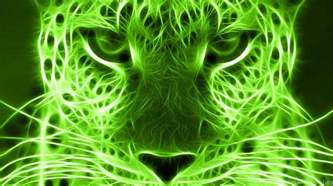 green  leopard wallpaper green backgrounds pictures