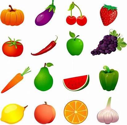 Fruit Veggies Fruits Vector Cross Adobe Section