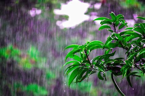weexpats rainy season  hurricane season  puerto