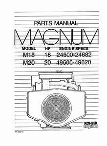 Kohler Magnum M18 18hp 24500