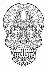 Skeleton Coloring Pages Head Skull Printable Getcolorings sketch template