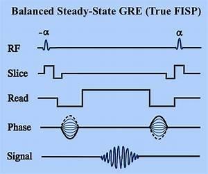True Fisp Sequence Diagram